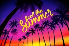 Предпосылка лета тропическая с ладонями, небом и заходом солнца Карточка приглашения рогульки плаката плаката лета Чувствуйте лет Стоковая Фотография RF