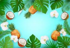 Предпосылка лета тропическая с экзотическими листьями ладони Стоковые Изображения