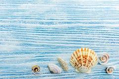 Предпосылка летних каникулов с seashells на голубых деревянных досках Стоковые Фото