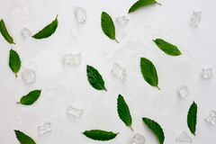 Предпосылка листьев и льда свежей мяты Плоское положение, взгляд сверху стоковое фото