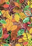 Предпосылка листьев осени бесплатная иллюстрация