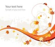 Предпосылка, листья и ladybirds картины осени Стоковое Изображение