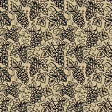Предпосылка лозы виноградины Стоковое Изображение RF