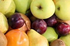 предпосылка много приносить такие слива и ri груш яблок зеленого цвета объявления Стоковая Фотография