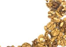предпосылка мое, котор слезли портфолио к белизне гостеприимсва грецкого ореха стоковое фото