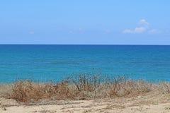 Предпосылка моря Beautyful с сухой травой на песочной земле, голубом море и облачном небе стоковые фото