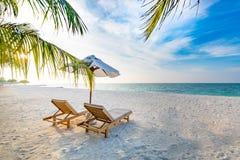 Предпосылка назначения перемещения лета Сцена пляжа лета, зонтик солнца кроватей солнца и пальмы стоковое фото