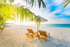 Предпосылка назначения перемещения лета Сцена пляжа лета, зонтик солнца кроватей солнца и пальмы стоковое фото rf