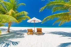 Предпосылка назначения перемещения лета Сцена пляжа лета, зонтик солнца кроватей солнца и пальмы стоковая фотография rf