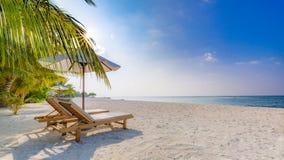 Предпосылка назначения перемещения лета Сцена пляжа лета, зонтик солнца кроватей солнца и пальмы стоковая фотография