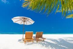 Предпосылка назначения перемещения лета Сцена пляжа лета, зонтик солнца кроватей солнца и пальмы стоковые фото
