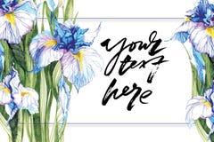Предпосылка нарисованная рукой художническая с космосом экземпляра Ботанический мотив вручную Нарисованные отметкой голубые цветк бесплатная иллюстрация