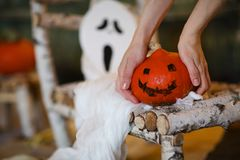 Предпосылка ночи Halloween Стоковые Изображения RF
