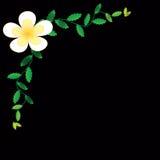 Предпосылка обоев цветка Стоковые Фото