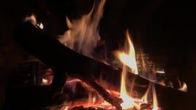 Предпосылка огня горящая видеоматериал