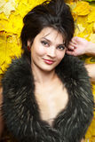 предпосылка осени выходит желтый цвет Стоковая Фотография