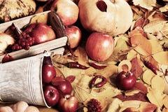 Предпосылка осени от желтых листьев, яблок, тыквы Сезон падения, еда eco и концепция сбора Стоковые Фотографии RF