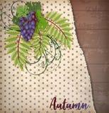 Предпосылка осени приветствуя с листьями виноградины иллюстрация вектора