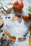 Предпосылка осени с желтыми кленовыми листами и тыквами Рамка сбора падения с космосом экземпляра Модель-макет для сезонной Стоковое фото RF