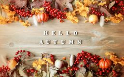 Предпосылка осени с здравствуйте! письмами осени и ягодами природы осени, тыквами и цветками Стоковое фото RF