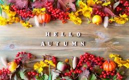 Предпосылка осени с здравствуйте! письмами осени и ягодами природы осени, тыквами и цветками жизнь осени все еще Стоковые Фотографии RF