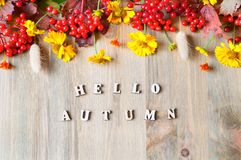 Предпосылка осени с здравствуйте! письмами осени и ягодами и цветками осени сезонными Стоковые Изображения RF