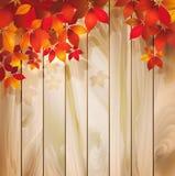 Предпосылка осени с листьями на деревянной текстуре Стоковая Фотография