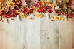 Предпосылка осени с сезонными ягодами и цветками калины осени на деревянной предпосылке Стоковое Изображение RF