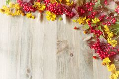 Предпосылка осени с сезонными ягодами и цветками природы осени на деревянной предпосылке Стоковое фото RF