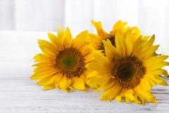 Предпосылка осени с солнцецветами Стоковые Фото