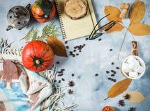 Предпосылка осени с чашкой зефира, желтых кленовых листов и тыкв Рамка сбора падения с космосом экземпляра Стоковые Изображения