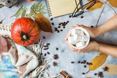 Предпосылка осени с чашкой зефира, желтых кленовых листов и тыкв руки ` s женщин держат чашку Стоковые Изображения RF