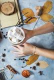 Предпосылка осени с чашкой зефира, желтых кленовых листов и тыкв руки ` s женщин держат чашку Взгляд сверху Стоковое Изображение