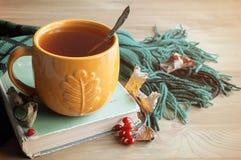 Предпосылка осени с чашкой чаю, старой книгой и теплым шарфом на деревянной предпосылке жизнь осени все еще Стоковое Изображение