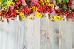 Предпосылка осени с ягодами и цветками калины осени на деревянной предпосылке Стоковое Изображение RF