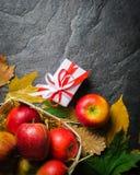 Предпосылка осени темные или рамка упаденных листьев желтого цвета и зрелых красных яблок Рамка для текста или фото Применимый дл Стоковое Изображение RF