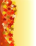 предпосылка осени флористическая Стоковые Фотографии RF