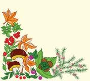 предпосылка осени флористическая Стоковые Изображения RF