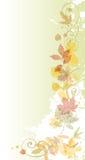 предпосылка осени флористическая Стоковое Фото