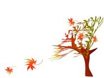 предпосылка осени флористическая Стоковая Фотография RF
