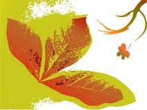 предпосылка осени флористическая Стоковое Изображение