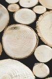 Предпосылка отрезков дерева стоковое изображение rf