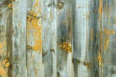 Предпосылка от серых доск с желтыми пятнами Стоковое Фото