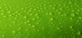 предпосылка падает зеленая вода Стоковое фото RF