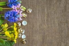Предпосылка пасхи или весны с яичками триперсток и яркой весной цветет Стоковые Фото