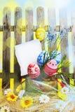 Предпосылка пасхи искусства с загородкой, яичками, весной цветет, пустой ca Стоковые Изображения