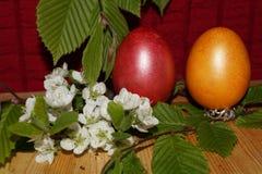 Предпосылка пасхи с красочными яичками и цветком Стоковые Изображения RF