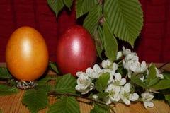 Предпосылка пасхи с красочными яичками и цветком Стоковые Изображения