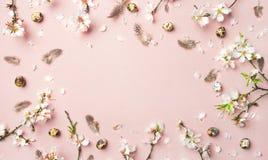 Предпосылка пасхи с яйцами, цветками миндалины и пер, розовой предпосылкой стоковая фотография rf