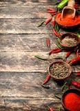Предпосылка перца Разные виды перца chili Стоковое Фото